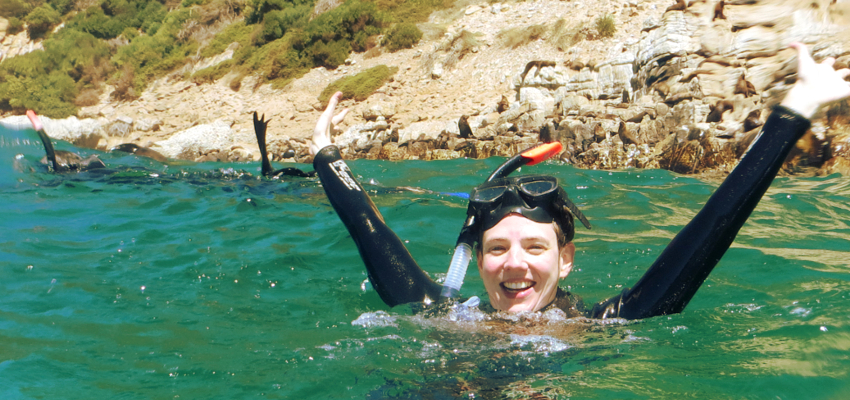 Swim With Seals Plettenberg Bay